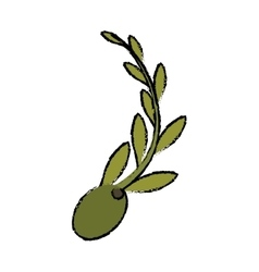 Olive and branch icon image vector