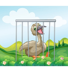 An ostrich inside the cage vector image