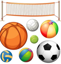 Set of different balls and net vector image