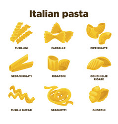 Delicious italian pasta types of high quality vector