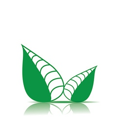 Eco green leaf icon vector
