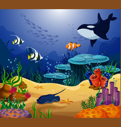 ocean or sea fish killer whale and stingray vector image