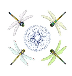 Dragonfly with flower vector