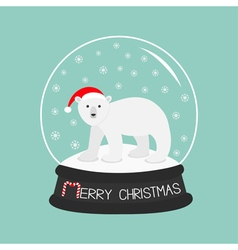 Arctic polar bear cub in red santa hat cute vector