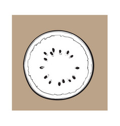half of ripe watermelon top view sketch style vector image
