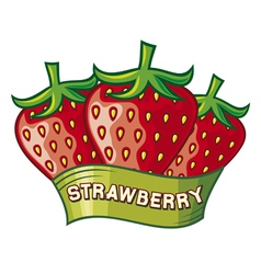 Strawberry label design vector