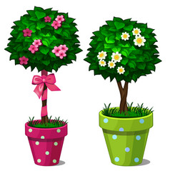 two decorative bonsai tree with flowers in pots vector image vector image