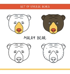 Malayan sun bear set isolated face heads bear in vector
