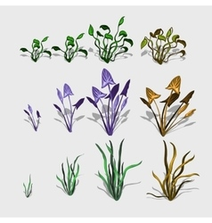 Fancy different plants and grass big set vector