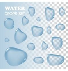 Water drops objects rain on background vector