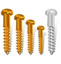 Construction screws vector