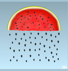 Watermelon rain vector