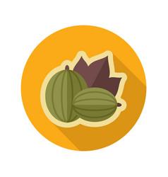 Gooseberry flat icon berry fruit vector