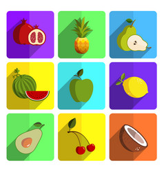 Colorful fruit icon set on bright background vector