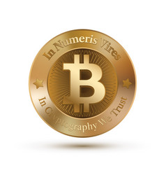 A bitcoat symbol like a coin vector