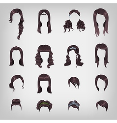 Assortment of female brunette hair vector