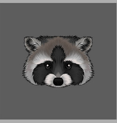 head of raccoon portrait of wild animal hand vector image