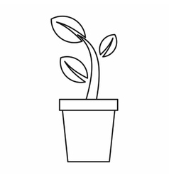 Young plant in a pot icon outline style vector image vector image