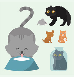 Cute cats character different pose funny animal vector