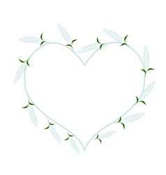 White sage flowers in a heart shape vector