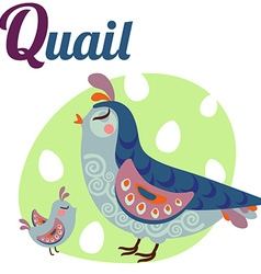 QuailLetter vector image vector image