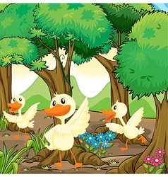 Three white ducks in the middle of the woods vector