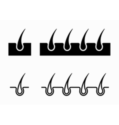Black hair follicle icons set vector