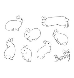 set of drawing small bunny vector image vector image