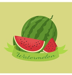 Watermelon fruit banner green vector
