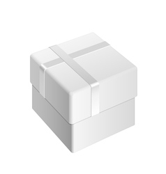 White blank package box vector
