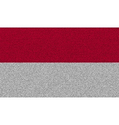 Flags indonesia on denim texture vector