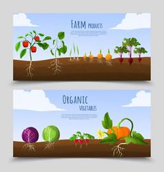 Healthy food horizontal banners vector
