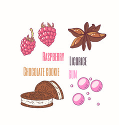 Sweet toppings anise raspberry cookie vector
