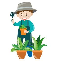 male gardener working in garden vector image vector image