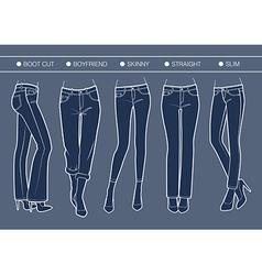 Women denim fits vector