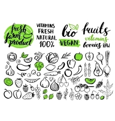 Handwritten food elements with rough edges vector