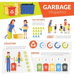 Waste collecting sorting recycling infographic vector