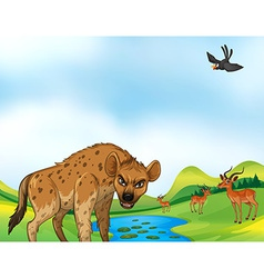 Animals and field vector