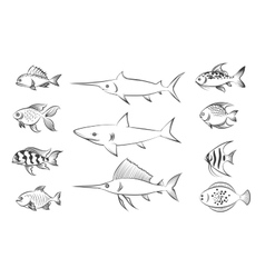 Painted fishes set vector