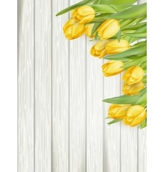 Yellow tulips EPS 10 vector image