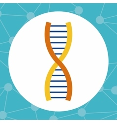 Colorful dna and science design vector