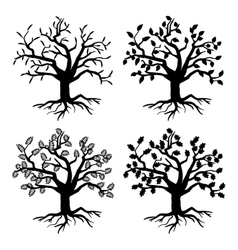 Park old trees tree silhouettes with roots vector