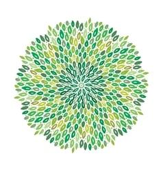 Floral green mandala vector