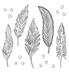 Feather elements set vector image vector image