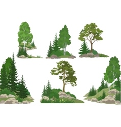 Landscapes with Trees and Rocks vector image vector image
