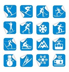 Stickers with winter sport icons vector