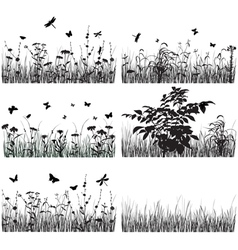 Collection of plants vector