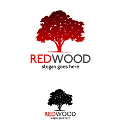 Red wood tree logo vector