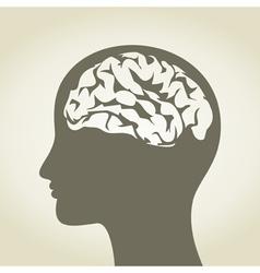 Brain5 vector