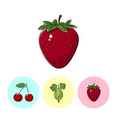 Fruit icons strawberry gooseberry cherry vector